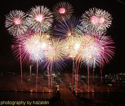 Team Malaysia-bunga api